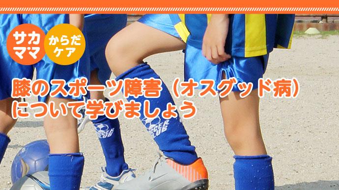 膝のスポーツ障害(オスグッド病)について学びましょう